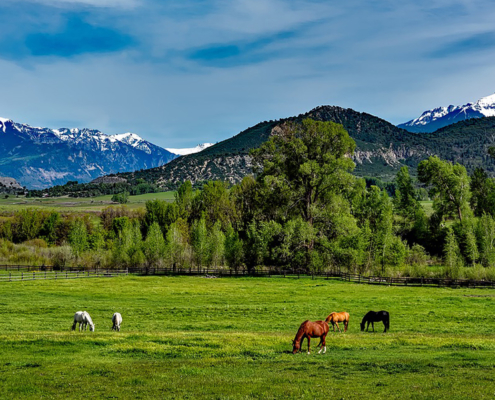 Best Family Dude Ranch Vacations Colorado