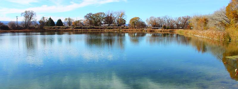 Chipeta Lake Fishing Colorado