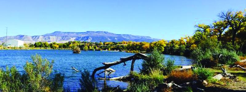 Corn Lake Fishing Colorado