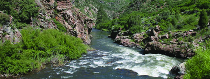 Waterton Canyon Fishing