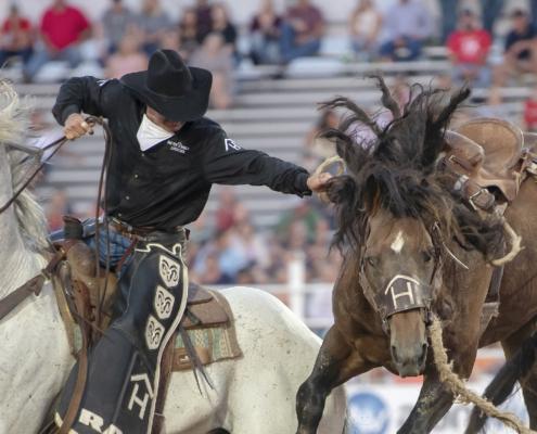 rodeos in Denver