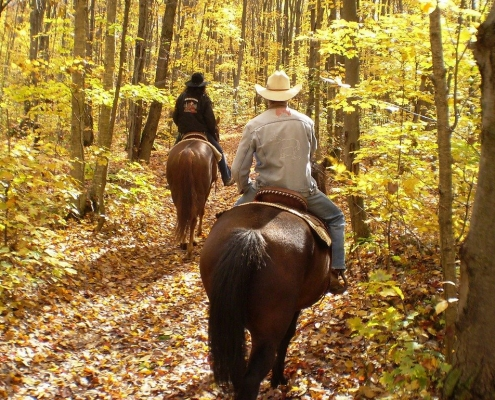 Cross Country Horseback Riding Featured